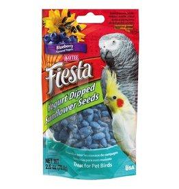 Bird (W) Fiesta Yogurt Dipped Sunflower Seeds - Blueberry Yogurt - 2.5 oz
