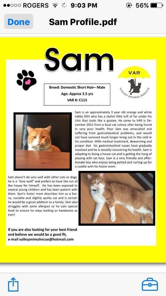 SAM (Adopted)