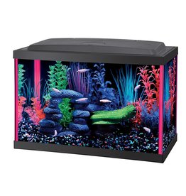Aquaria (W) NeoGlow Rectangle Aquarium Kit - Pink - 5.5 ga