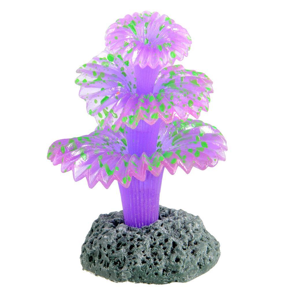 Aquaria Glowing Sabellidae