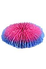 Aquaria Plate Coral - Pink - Smal