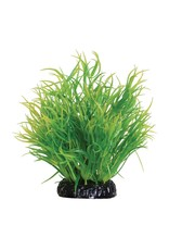 Aquaria UT LEMON GRASS - 6'
