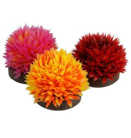 Aquaria (D) UT Foreground Plant Balls - Style B - 3 pk