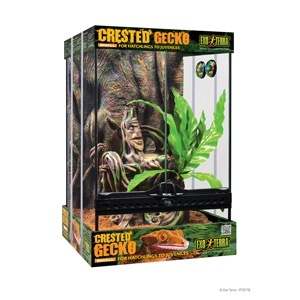 Reptiles W Exo Terra Crested Gecko Habitat Kit Small 30 X 30 X