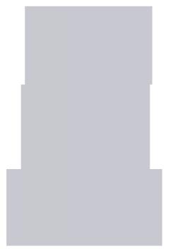 Cricket and Company