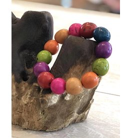 Ecuador Crafts Bracelet, Pambil Palm Seeds (RAINBOW)