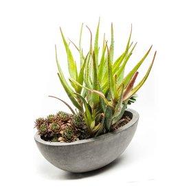 "My Spirit Garden Planter-Yano Oval-Small (13""x6""x4"")"