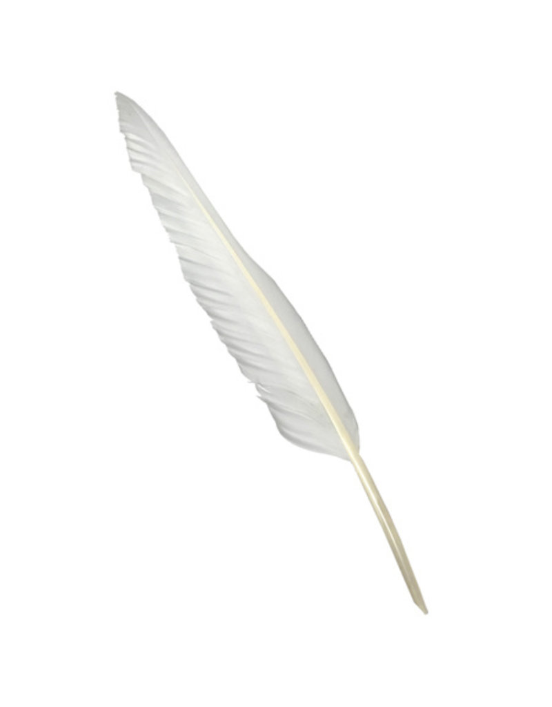 """Vintage Feather Quill 12"""""""