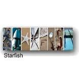 LisArt Boat Yard-'Starfish' (White Rustic Frame)<br />Boat Yard-'Starfish' (White Frame)