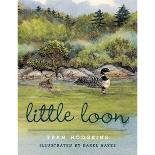 National Book Network Little Loon Book