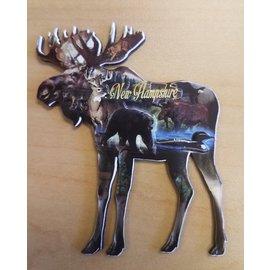 Eastern Illustrating Magnet-Dimensional Moose