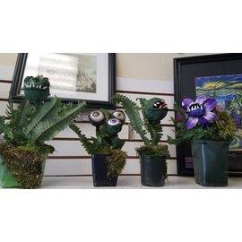 Barefoot Beautiez Monster Plant: Large