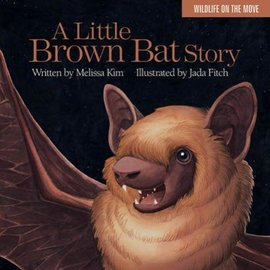 Islandport Press A Little Brown Bat Story  by Melissa Kim