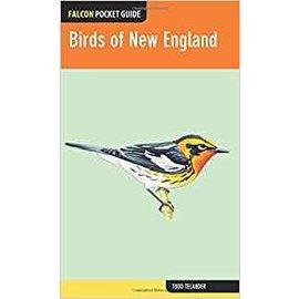 National Book Network Birds of New England - Falcon Pocket Guide
