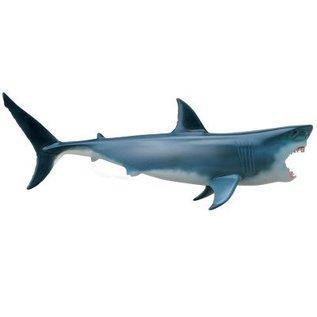 4D Master 4D Master 4D Vision Great White Shark Anatomy Model