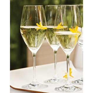 Zwilling J.A. Henckels ZWILLING Predicat Champagne 8.9oz 6 pc Set