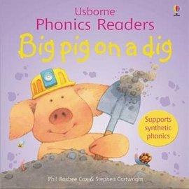 Usborne Usborne Big Pig on a Dig