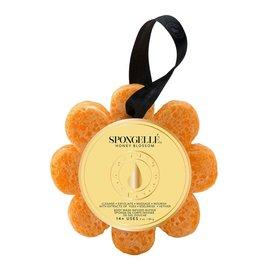 Spongelle Spongelle Wildflower Honey Blossom