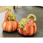 Certified International Certified International Harvest Splash 3D Salt & Pepper Set Pumpkins
