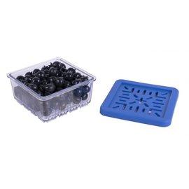 Harold Import Company Inc. HIC BerryFresh Produce Box Half Pint blue lid