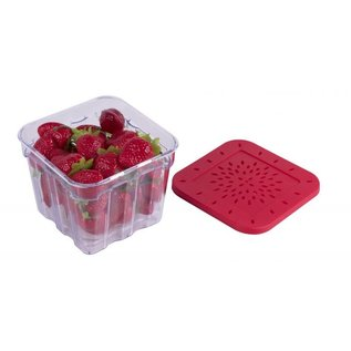 Harold Import Company Inc. HIC BerryFresh Produce Box 1 Liter red lid