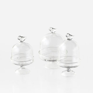 One Hundred 80 Degrees One Hundred 80 Degrees Glass Mini Bird Dome Assorted Sizes Sold Individually