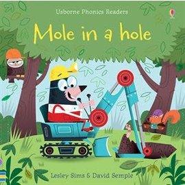 Usborne Usborne Mole in a Hole