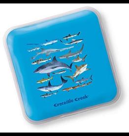 Crocodile Creek Ice Pack Set - Sharks