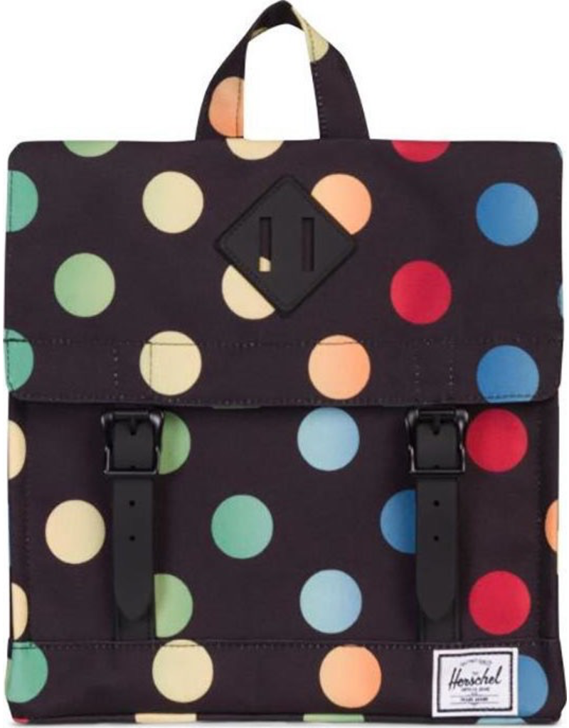 Herschel Survey Kids Rainbow
