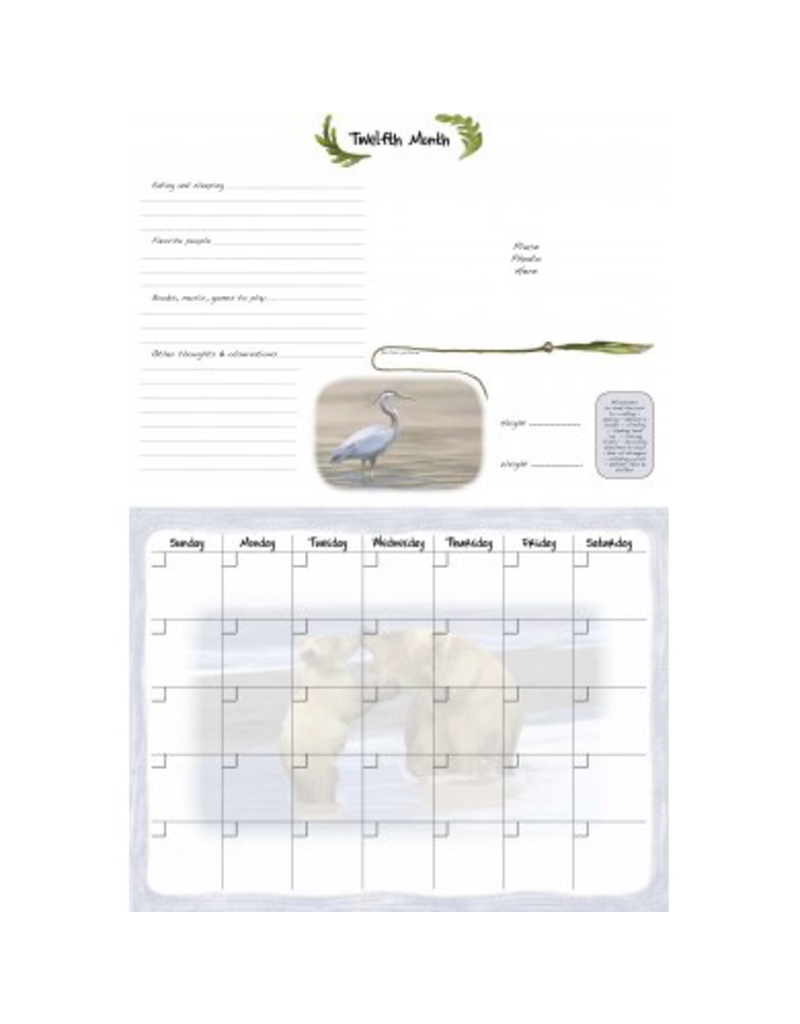 Blue Heron Art Enterprises Baby's 1st Year Calendar
