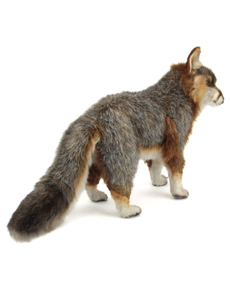 Hansa Hansa Fox, Grey