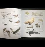 Random House Curious Kids Nature Guide