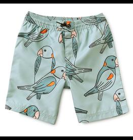 Tea Collection Parakeets Swim Trunks
