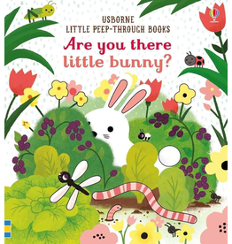 Usborne Are You There Little Bunny?