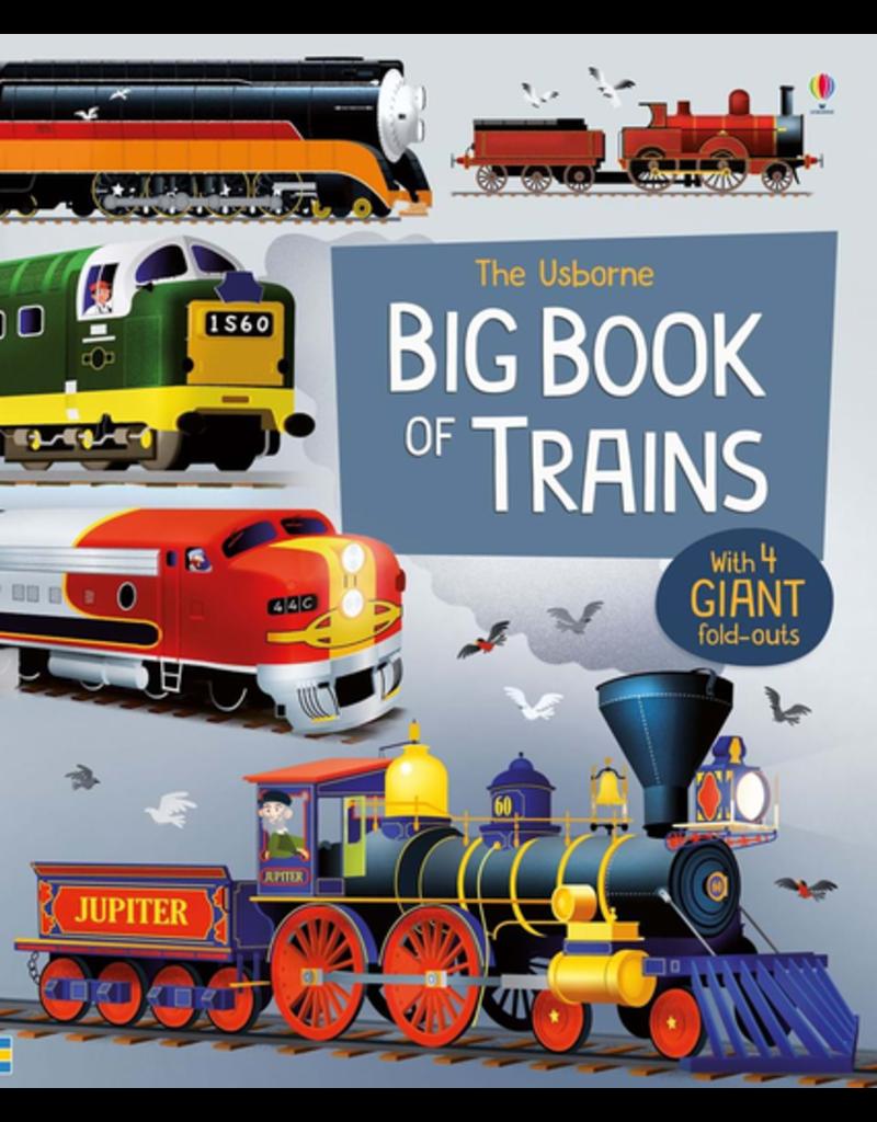 Usborne Big Book Of Trains