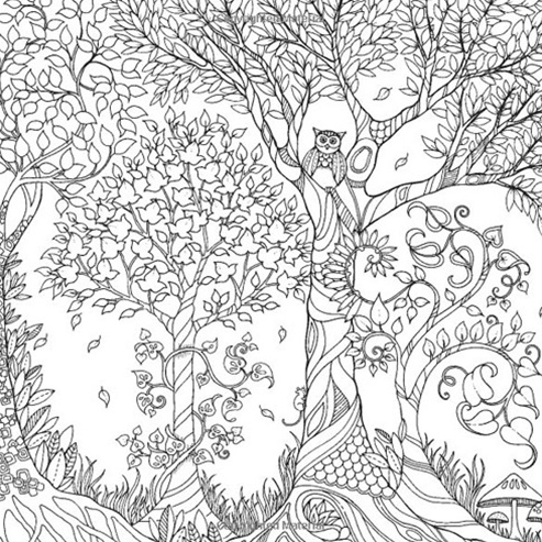 - HACHETTE MUDPUPPY JOHANNA BASFORD ENCHANTED FOREST COLORING BOOK - BellaBoo