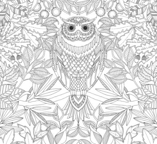 Hachette Mudpuppy Johanna Basford Secret Garden Coloring Book Bellaboo