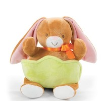 NORTH AMERICAN BEAR COMPANY BUNNY WITH POCKET BASKET