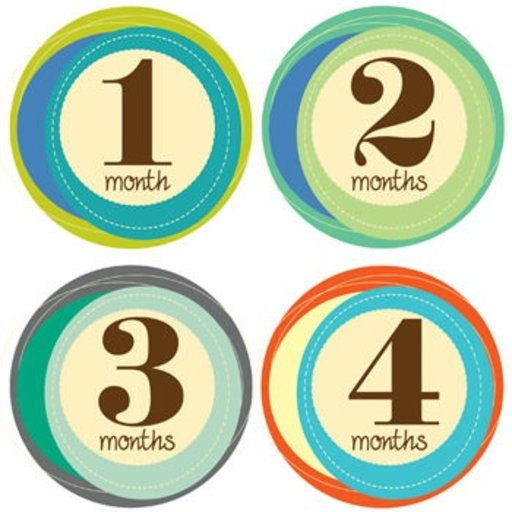 LUCY DARLING MONTHLY BABY STICKERS-RETRO NUMBERS 1-12 MONTHS