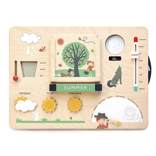 TENDER LEAF TOYS WEATHER WATCH