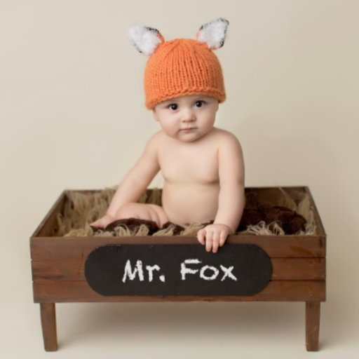 THE BLUEBERRY HILL RUSTY THE FOX HAT
