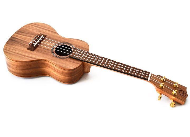 Twisted Wood - AR-800C Aurora Ukulele w/bag, Concert