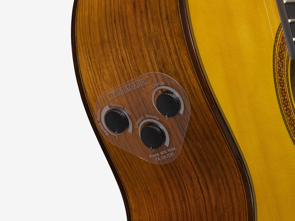 Yamaha - CG-TA TransAcoustic Nylon Classical w/Case, Natural