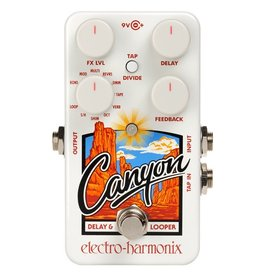 Electro-Harmonix - Canyon Delay and Looper Pedal