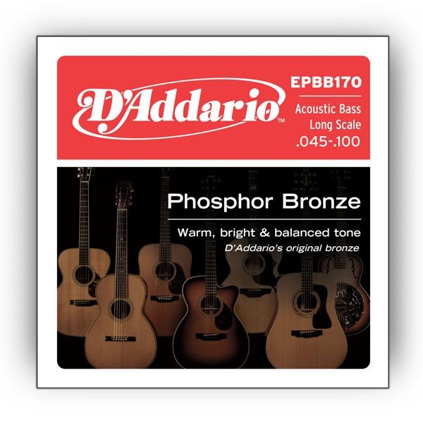 D'Addario - Acoustic Bass Strings 45-100