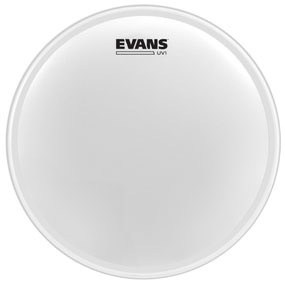 Evans - UV1 Coated, 10""