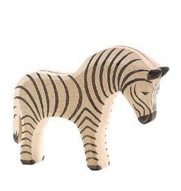 Ostheimer Zebra, large