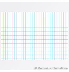 Mercurius Exercise book graph 16x21cm, 4x7mm graph - blue