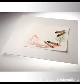 Mercurius Painting board plastic 50x55cm