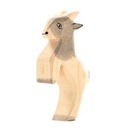 Ostheimer Goat small jumping